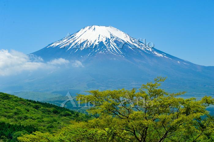 三国峠より望む富士山
