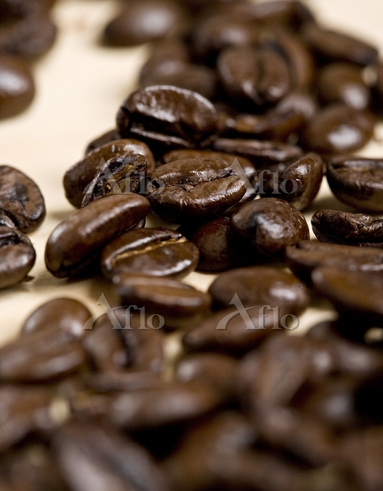 Close-up of Coffee Beans, Stud・・・