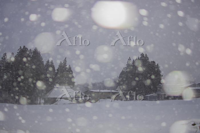 山形県 雪降る村