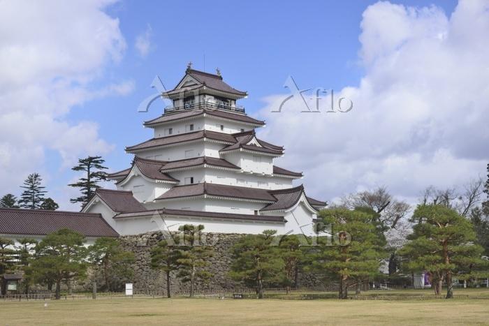 若松城(鶴ヶ城)桜9