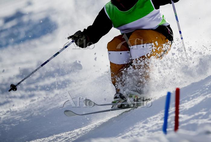 スキー モーグル