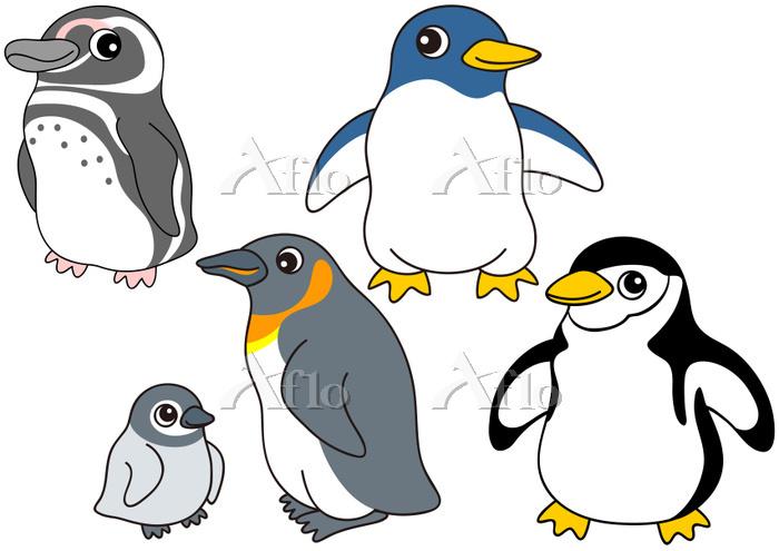 ペンギンのセット オウサマペンギン マゼランペンギン ケープ・・・