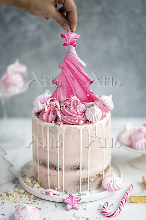 Tall layer cake with cranberry・・・