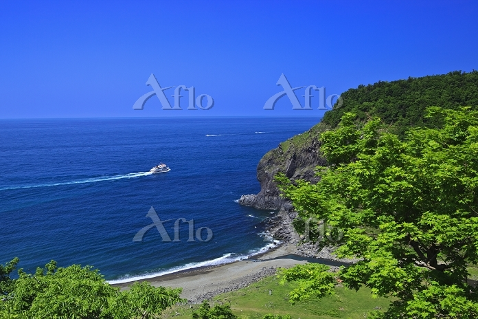 北海道 観光船と岩尾別川