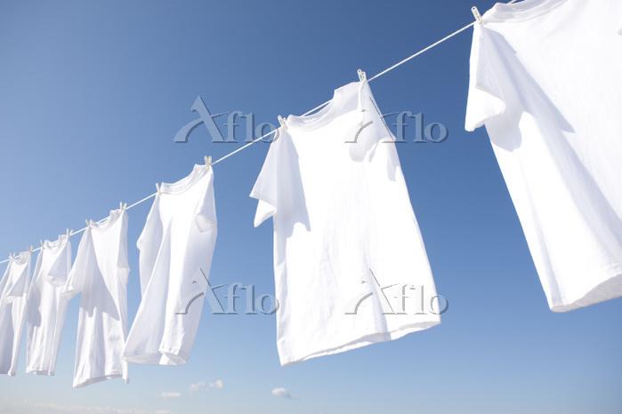 青空と白いシャツの洗濯物