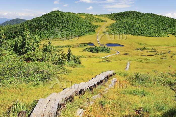 福島県 尾瀬 燧ヶ岳登山道より望む熊沢田代の草紅葉と木道