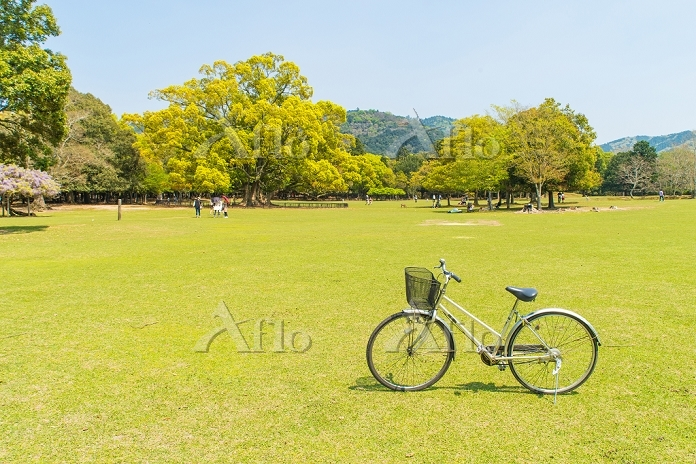 奈良県 飛火野 サイクリング