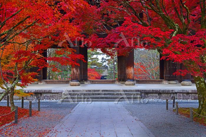 京都府 京都市 秋の南禅寺 三門