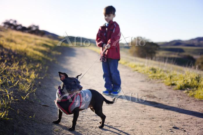 ペットの犬と男の子