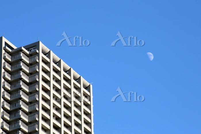 昼間見える月 月齢8.9 午後3時過ぎ