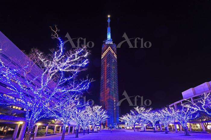 福岡県 福岡市福岡タワーのクリスマス2019