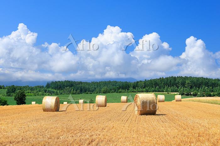 入道雲と麦わらロール