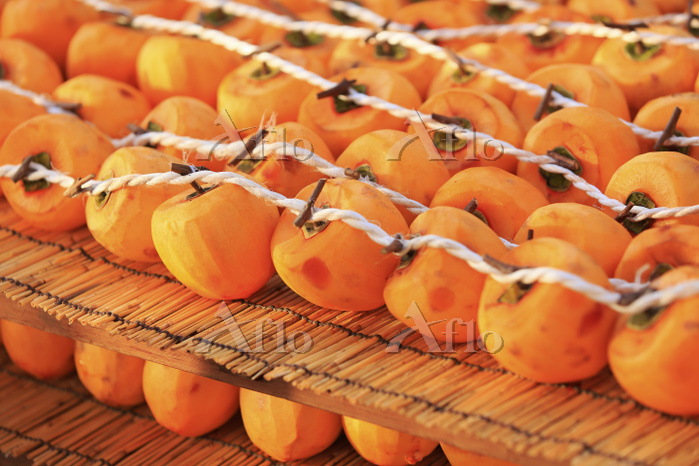 山梨県 天日干し準備で並べられた柿