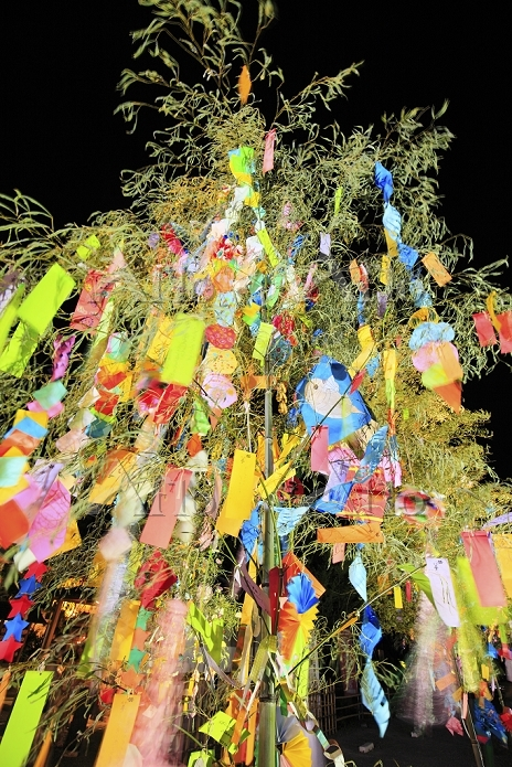 七夕の笹飾りと夜空