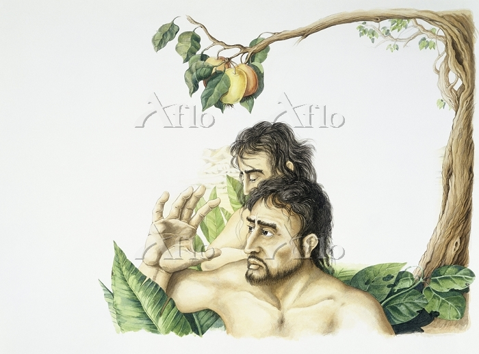 Bible - Adam and Eve and the T・・・