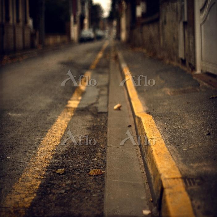 不可解 黄色の線 舗道