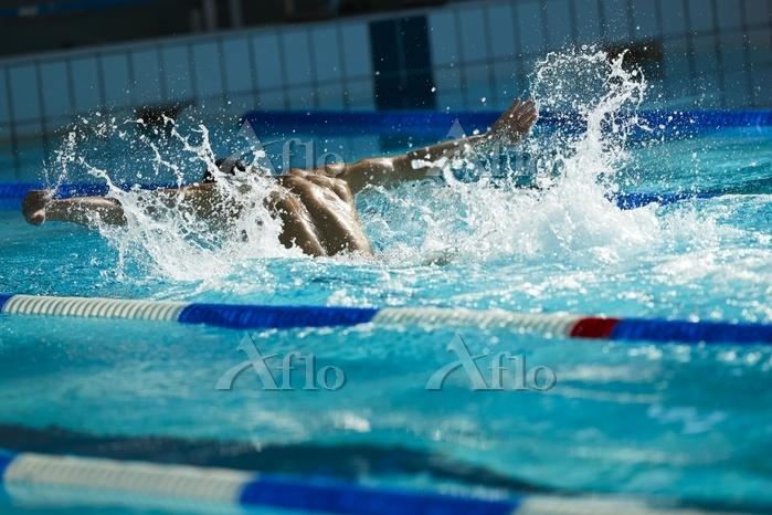 水泳 バタフライ