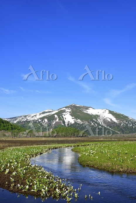 群馬県 尾瀬ヶ原 中田代の下ノ大堀川から望む残雪の至仏山と水・・・