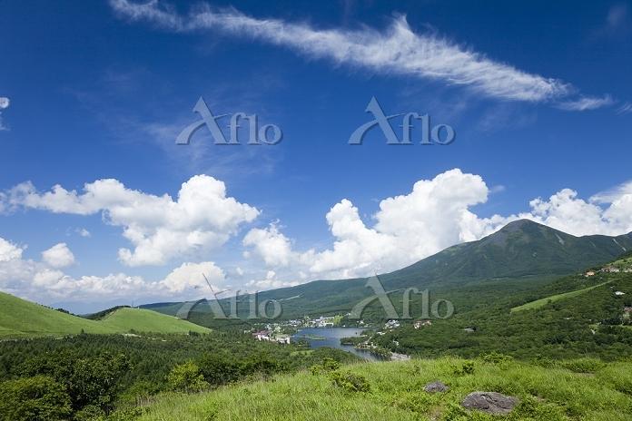 長野県 白樺湖