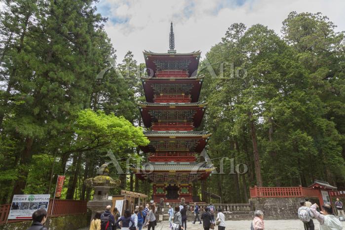 栃木県 日光東照宮 五重の塔