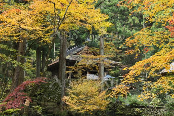 長野県 光前寺 本堂