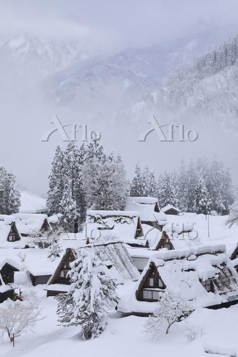富山県 五箇山 雪景色の相倉合掌造り集落