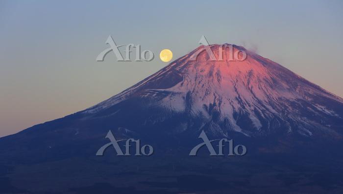 静岡県 乙女峠から見る朝日に染まる富士山と落月