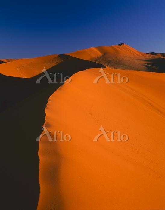 ナミビア ナミブ砂漠 ソサスブレイ 砂丘 ナミブ・ナウクルフ・・・