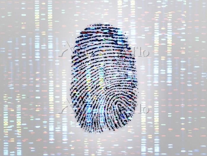 A fingerprint with a DNA (deox・・・