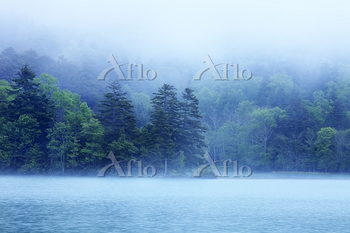 朝靄のオンネトー 足寄町 北海道