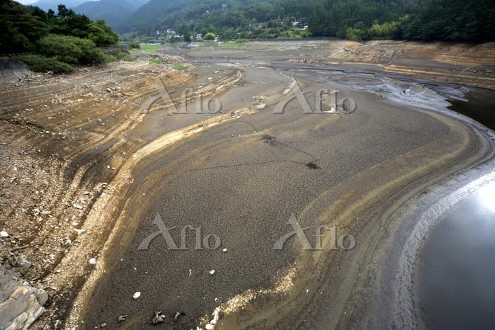 干上がった面河ダム湖