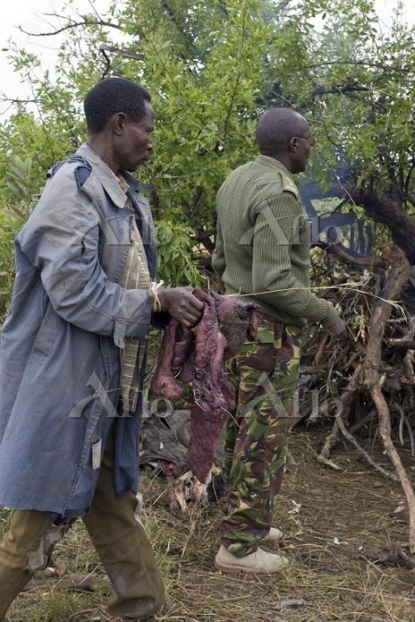 Poachers apprehended by Anti-P・・・