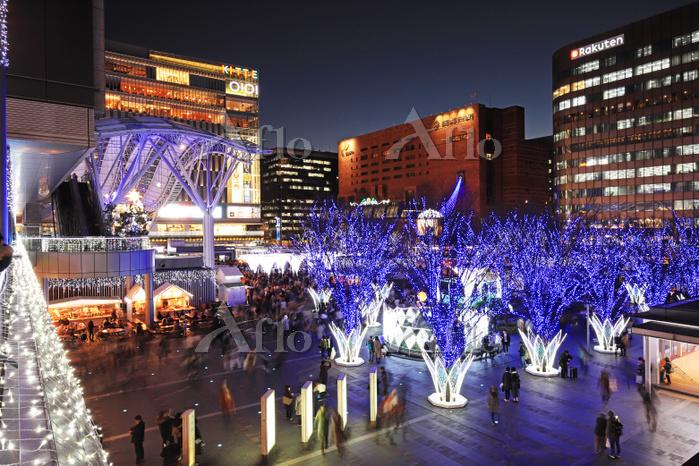 福岡県福岡市博多区 博多シティ クリスマスイルミネーション2・・・