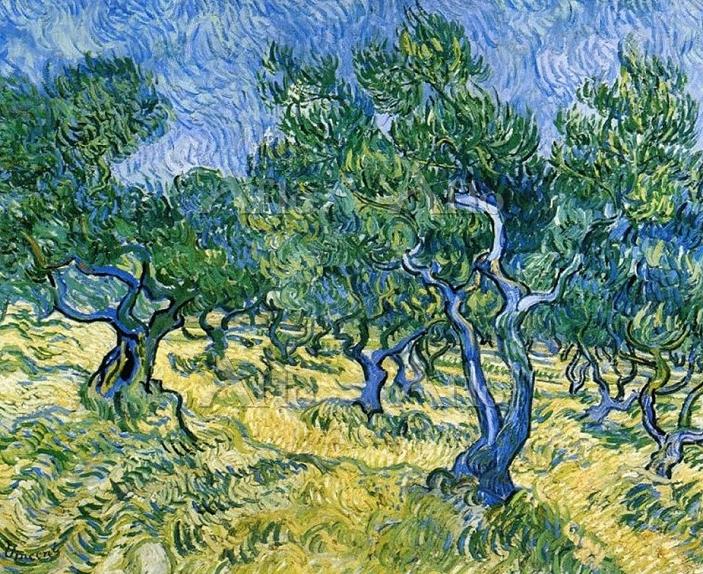 ゴッホ 「オリーブの木」