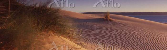 A view over a small sand dune ・・・