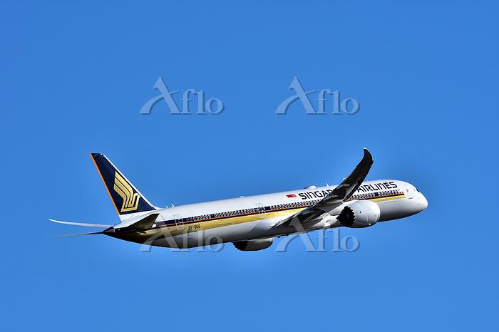 シンガポール航空ボーイング787-10ドリームライナー