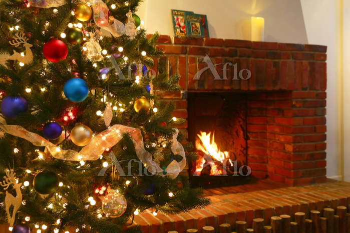 暖炉とクリスマスツリーのあるリビング
