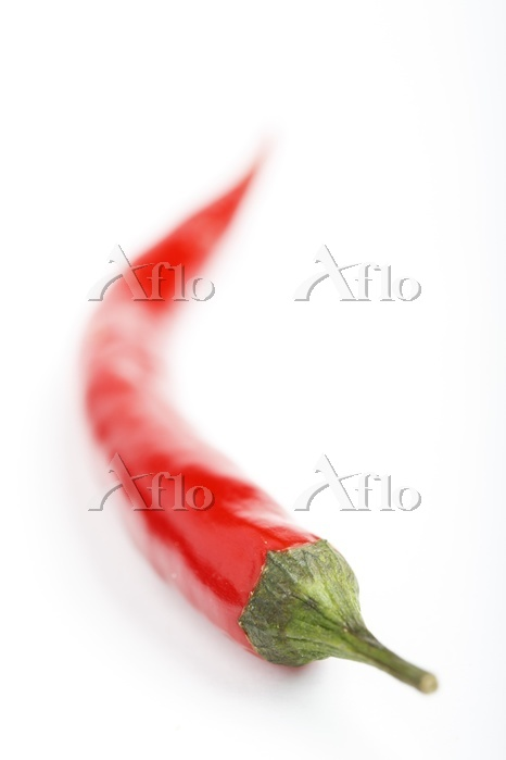 Red chili pepper, Photo by dbn