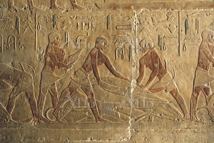 Egypt - Cairo - Ancient Memphi・・・