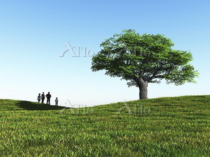 丘に立つ一本の大樹を眺める家族4人