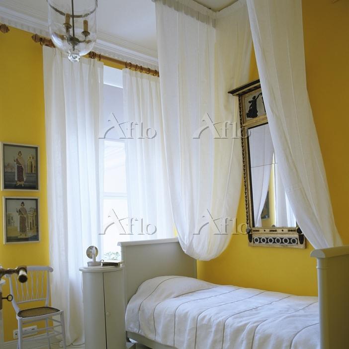 Grand 1850s St Petersburgh apa・・・