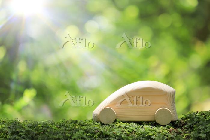 原生林の中に置かれた木製の車