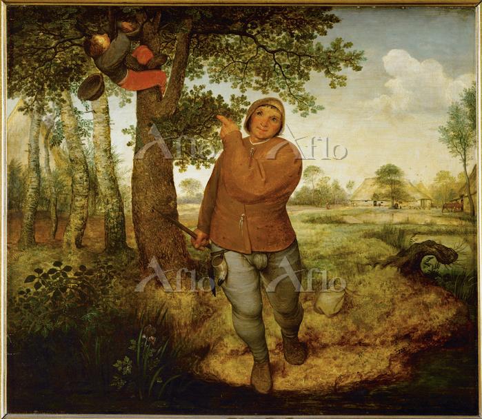 ピーテル・ブリューゲル 1世 「農夫と鳥の巣取り」