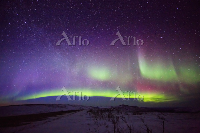 アメリカ合衆国 アラスカに舞う神秘のオーロラ