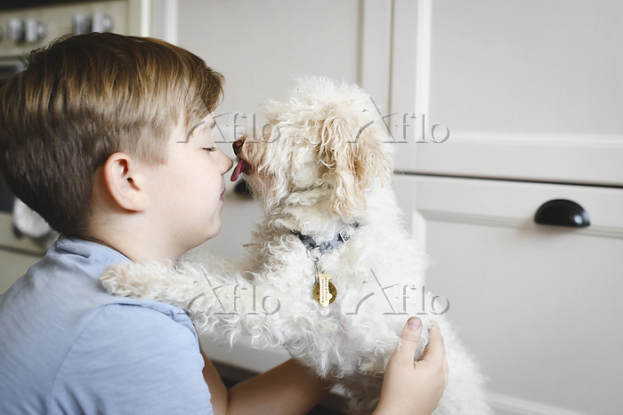 Boy playing with his dog at ho・・・