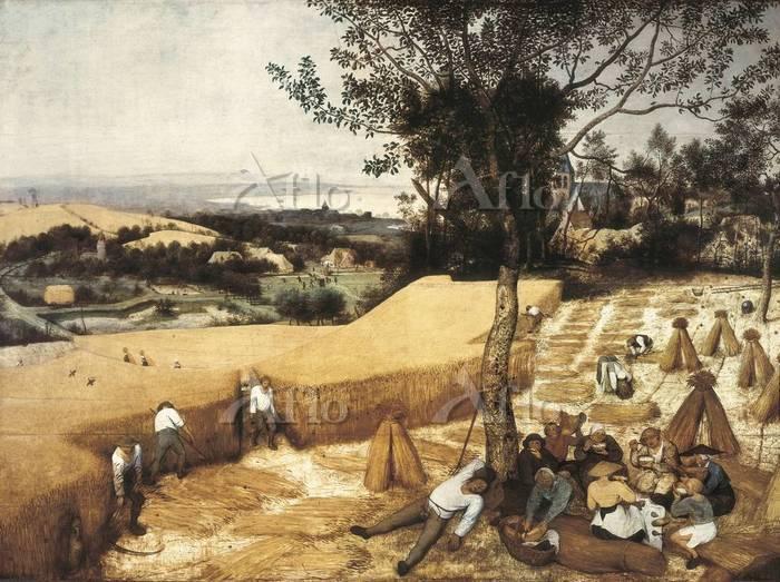 ピーテル・ブリューゲル 1世 「穀物の収穫」