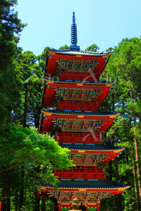 栃木県 初夏の日光東照宮・五重塔
