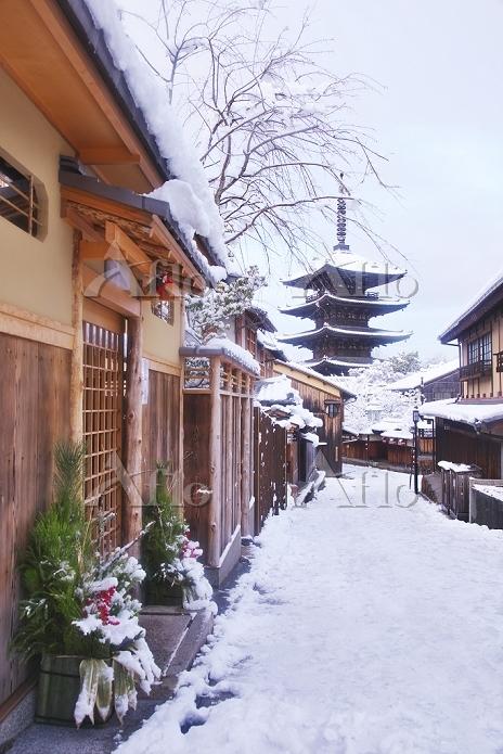 京都府 お正月の八坂の塔