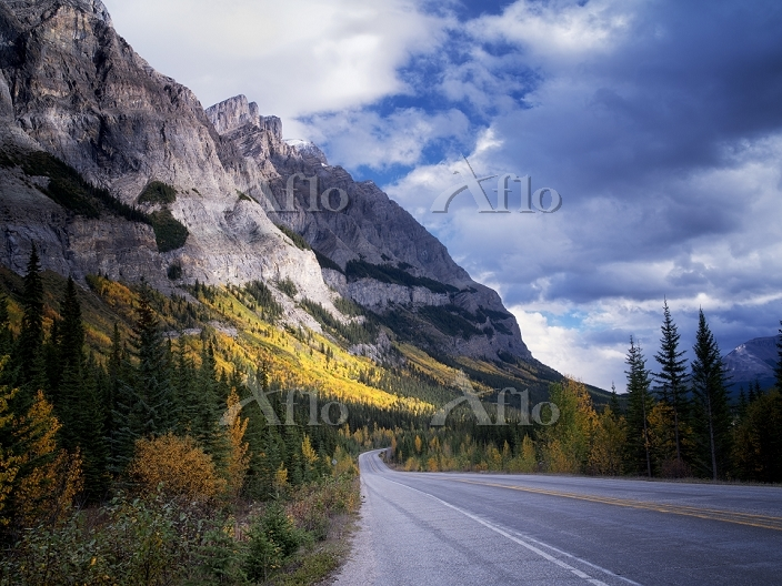 Mountainside with fall colored・・・
