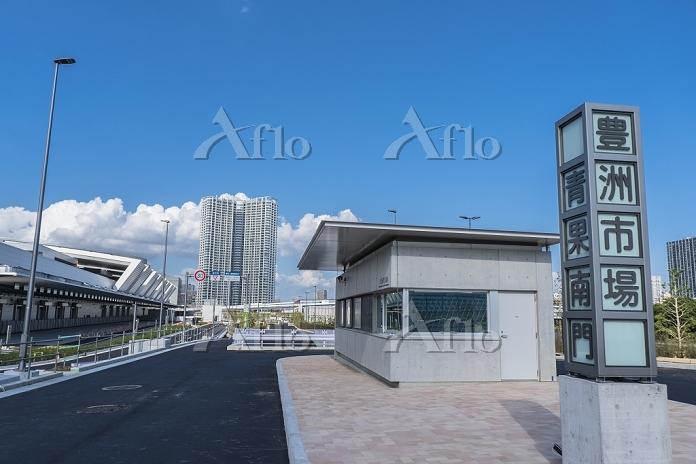建設中の豊洲市場5街区と豊洲の高層マンション